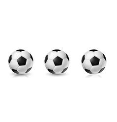 soccer ball set tree realistic balls vector image