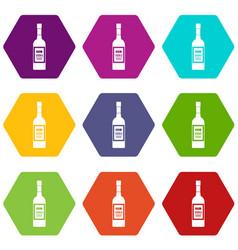 bottle of vodka icon set color hexahedron vector image