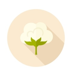 Cotton flat icon with long shadow vector image