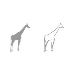 Giraffe grey set icon vector