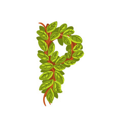 letter p english alphabet made of tree branches vector image