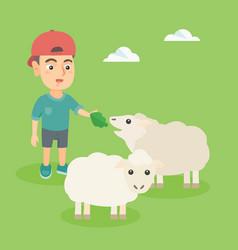 little caucasian boy feeding a sheep with salad vector image