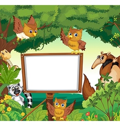 Wild animals and white board in the jungle vector image