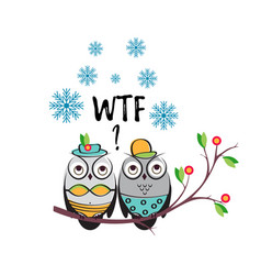 winter couple owls in the swimsuits on a vector image