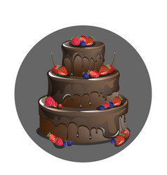 Chocolate cake with berries vector
