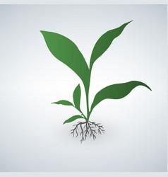 cute green plant green emblem vector image