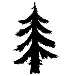 fir forest motive vector image