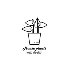 flower shop logo design vector image