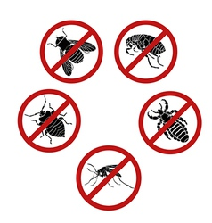 No parasites vector