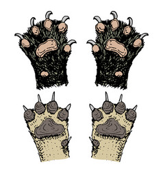 Paws of animals or footprints and wildlife hands vector