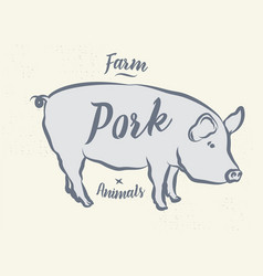 Pig pork vintage logo retro print poster for vector