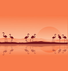 silhouette of flamingo with reflection on the lake vector image