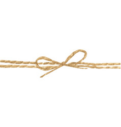 String or twine tied in a bow vector