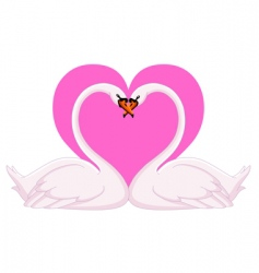 swans valentine vector image