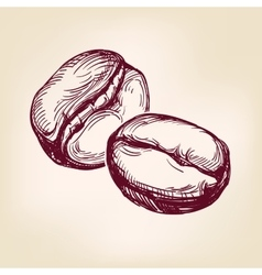 Coffee beans sign hand drawn llustration vector