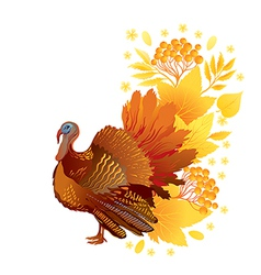 Thankgiving card with turkey vector