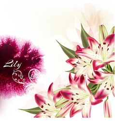 Background with pink lily flowers and spot vector