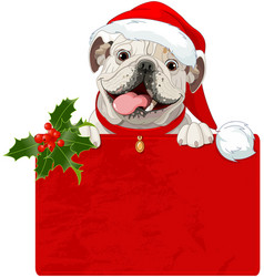 Christmas english bulldog vector
