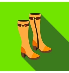 Pair of women autumn boots icon flat style vector image