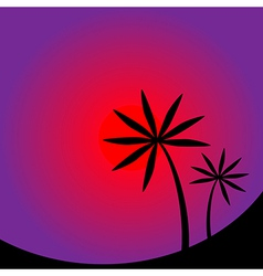 Palm tree image vector image
