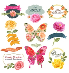 Vintage labels with flowers and butterflies vector image