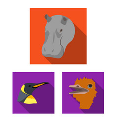 wild animal flat icons in set collection for vector image