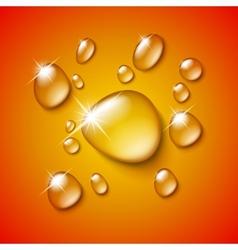 Transparent water drop vector image vector image