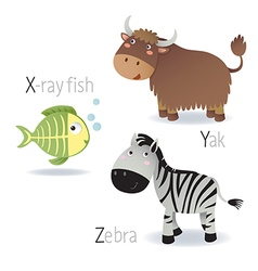 Alphabet with animals from X to Z vector image vector image