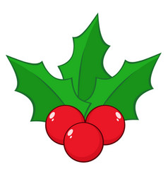 christmas holly berries and leaves vector image
