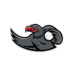 Eagle handball player mascot vector