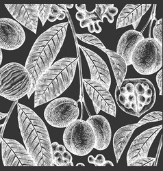 hand drawn sketch walnut seamless pattern organic vector image