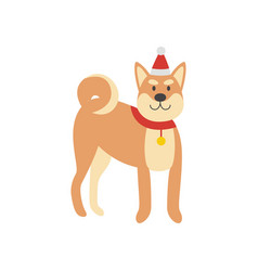 shiba inu dog in santa red hat and scarf flat vector image