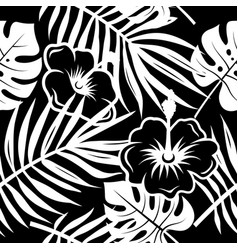 tropical pattern 003 vector image