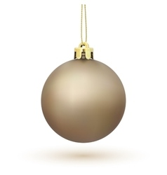 Christmas Tree decoration isolated on white vector image