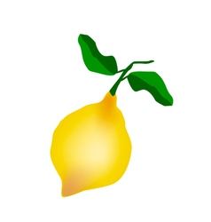 A Fresh Lemon on A White Background vector