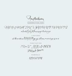 amsterdam handwritten script font brush vector image