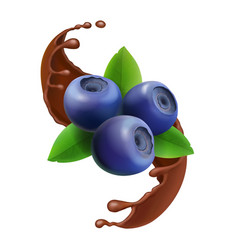 Blueberry in chocolate splash 3d icon berry vector