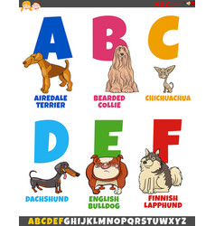 cartoon alphabet collection with dog breeds vector image