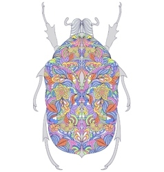 Colorful beetle on white background vector