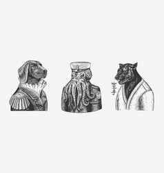 octopus sailor and dog officered black panther and vector image