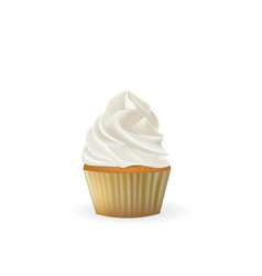 vanilla cupcake on white background vector image