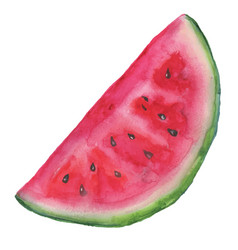 Watermelon slice background with seed and skin vector