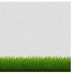grass border isolated transparent background vector image vector image