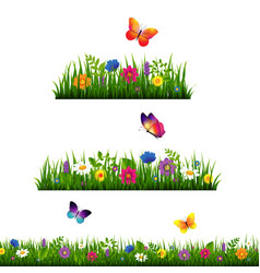 Grass border with flower collection vector