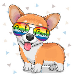 cool cartoon corgi with sun glasses vector image