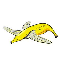 empty banana peel vector image