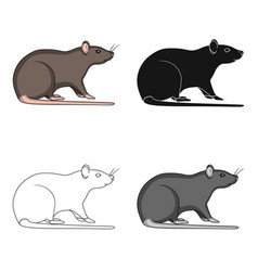 rodent rat single icon in cartoonblackoutline vector image