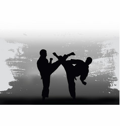 two men demonstrate karate vector image