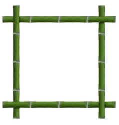 Empty frame of bamboo stalks vector