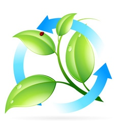 Fresh Green Leaves Icon vector image vector image